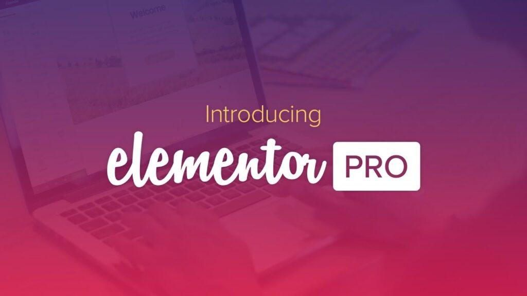 Elementor-Pro 3.3.1